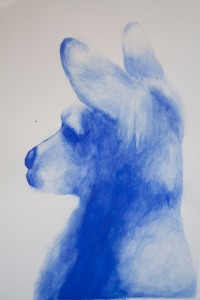blue-kangaroo-krister-final