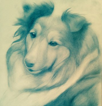 collie-Krister-Eide-art